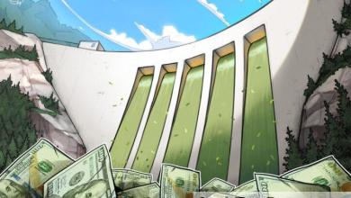 صورة أرينغتون كابيتال تدعم مشاريع ألغوراند بصندوق نمو قيمته ١٠٠ مليون دولار