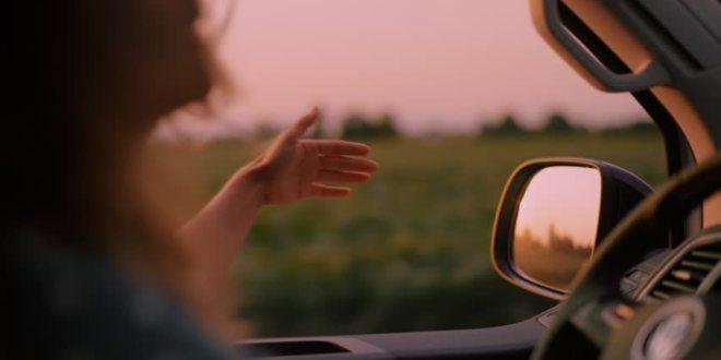 سائق المدينة