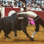 Aragón es la segunda comunidad en festejos taurinos populares