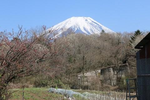 実家から見える富士山