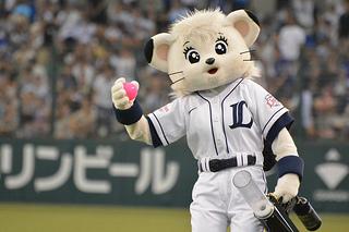 2014年 埼玉西武ライオンズチケット購入ガイド