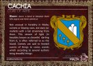 The CACHIA coat of arms