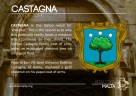 The CASTAGNA coat of arms