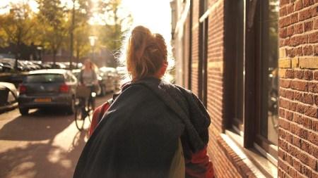 Bog pictures walking people-2591646_960_720