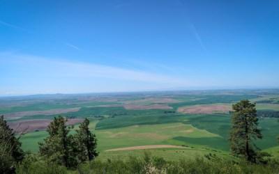 Kamiak Butte Hike: 3.5-Mile Loop Trail with Fabulous Views