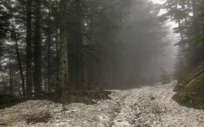 A snowy adventure on Mt. Teneriffe