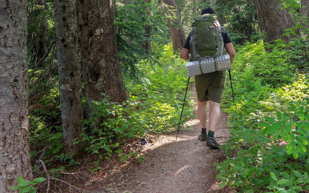 The Trail Not Taken: Misadventures on the Smithbrook Trail to Lake Janus