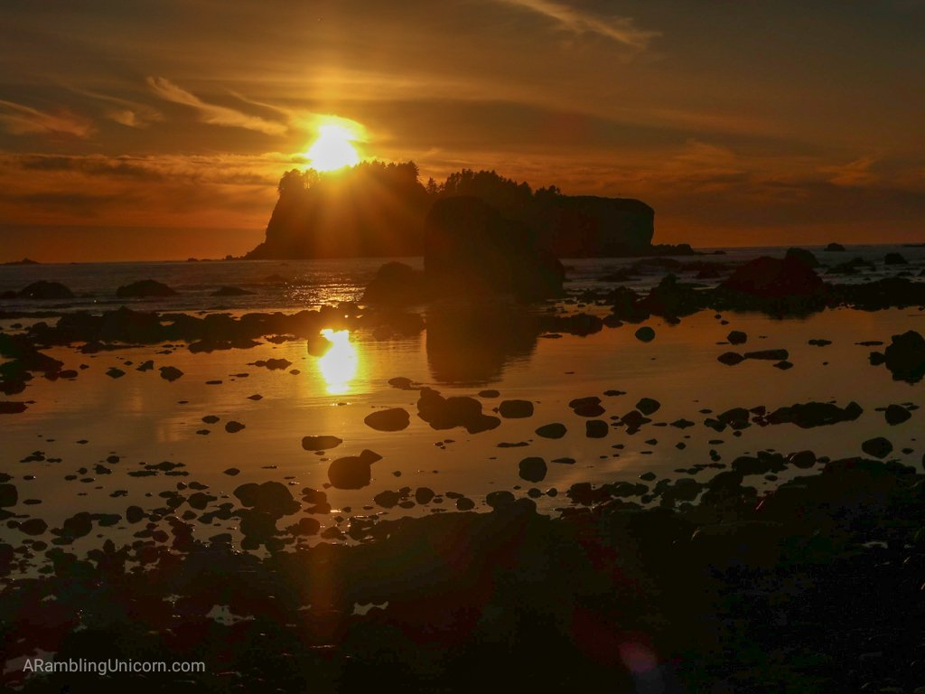 A brilliant yellow unset as viewed from Wedding Rocks on the Ozette Triangle Loop Trail