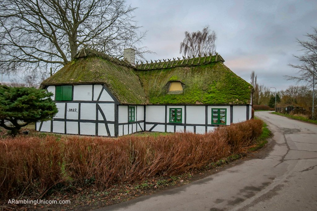 Odense blog: This rustic cottage is on the grounds of the Folk High School. Incidentally, Tetris will be moving into it in a few months.