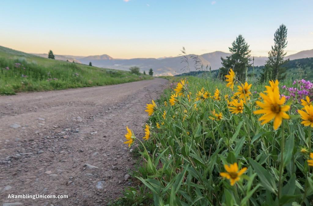 Great America Road Trip Days 10 & 11: Boondocking Near Yellowstone