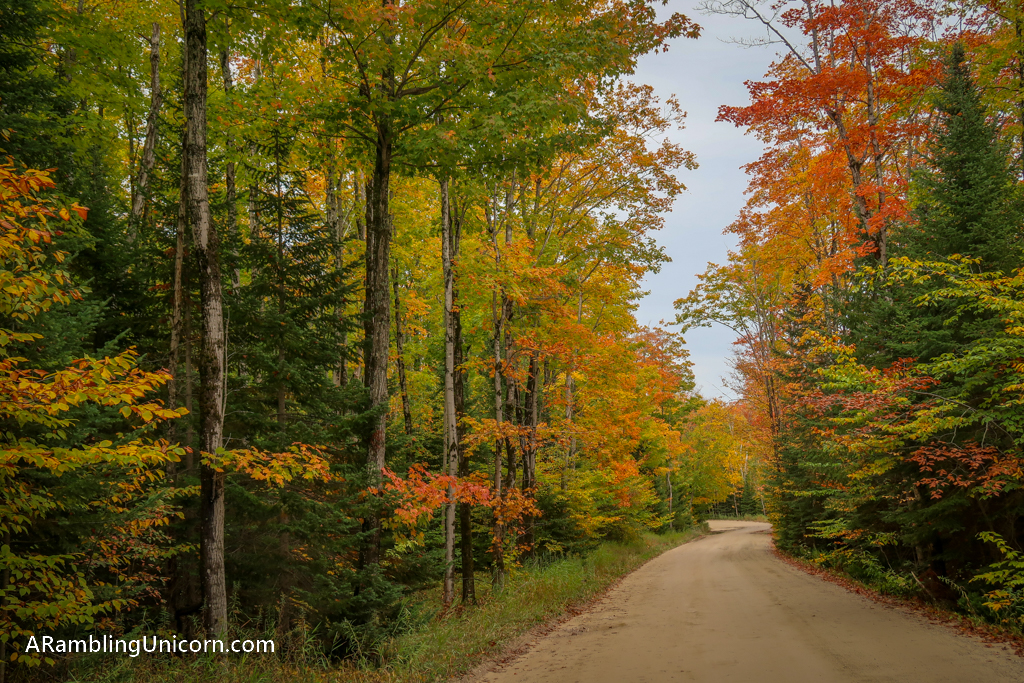The road to Miners Falls in Pictured Rocks National Lakeshore is lined with trees in gorgeous red and yellow and orange fall colors
