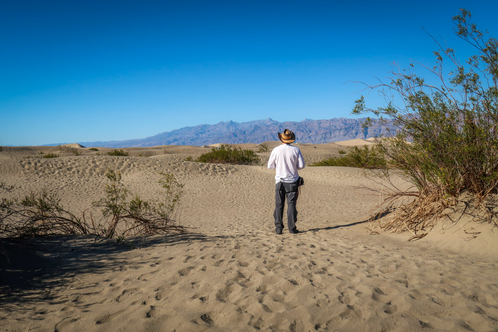 Daniel stands with his back to the camera looking out over the vast sea of sand dunes