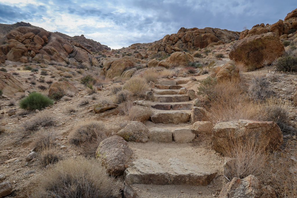 A trail heading uphill with steps carved into it