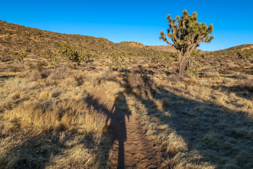 Shadow of a hiker on the trail carrying a water jug near Upper Covington Flats