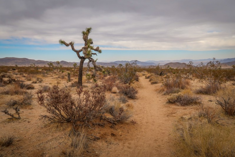 High desert landscape with grey skies and dark clouds.