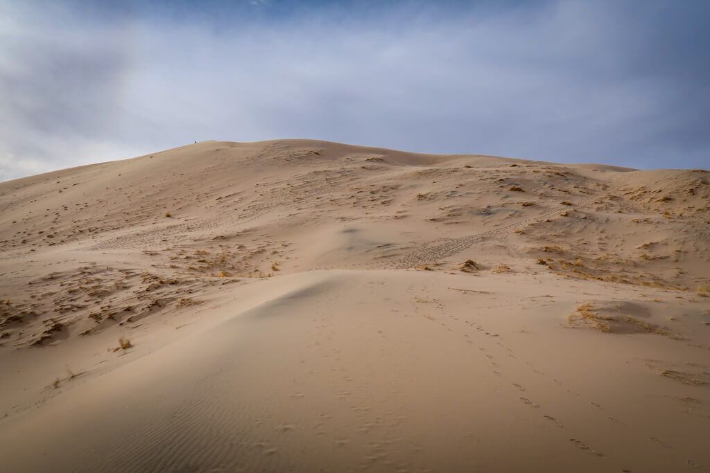 Climbing up the Kelso Dunes on the Kelso Dunes Trail