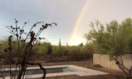 The rainbow says it is time to fill the pool