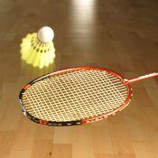 ARAMIS Badmintonhalle mit 9 Feldern