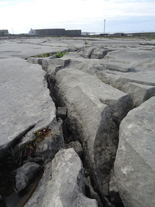 slabs of limestone