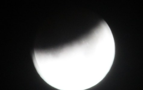 Looking To The Sky At The Super Blue Blood Moon