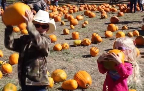 Harvest Fest at the Littleton Museum