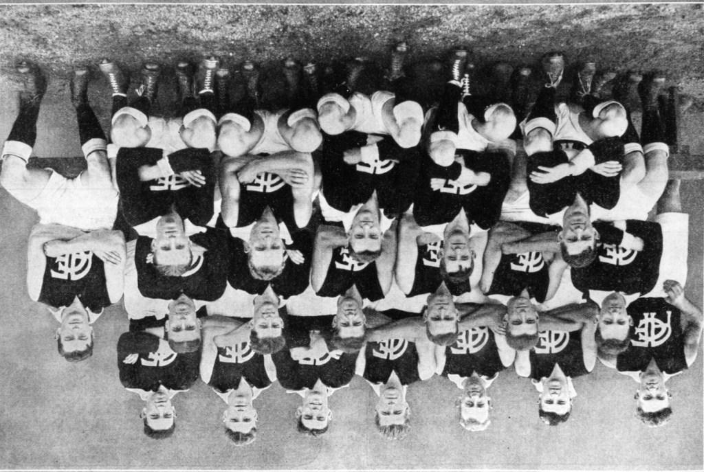 AFC 1931 premiers