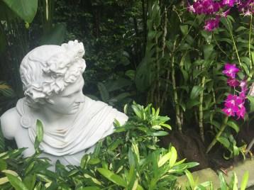 sd1-botanic-caesar