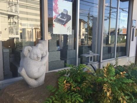 jd2-koala