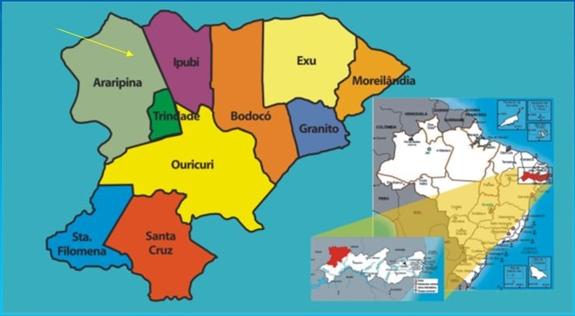 Conheça todos os votos para Presidente no Sertão do Araripe
