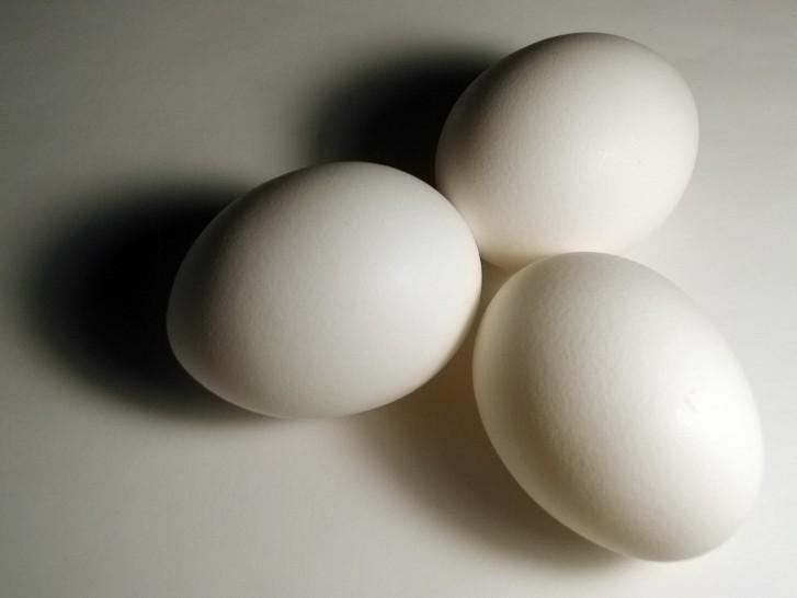 normal_eggs1