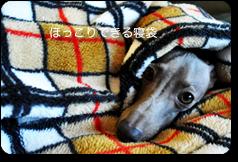 「犬寝袋」いつでもどこでもほっこり寝袋| ARATA HOUSE寝袋