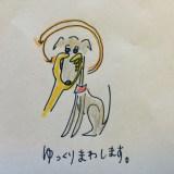 しつけ マズルコントロール【犬の育て方 vol.30】