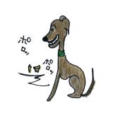 犬の成長その4 約6か月~1年の若齢期【犬の育て方 vol.43】