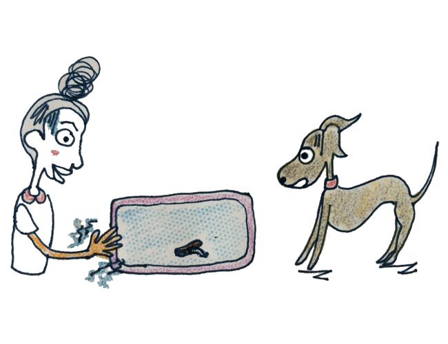 症状から解る犬の病気|便から犬回虫が出てきた時の対処方法