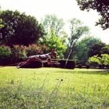 良質な芝がある公園って少ないので、芝探しに行ってきました。