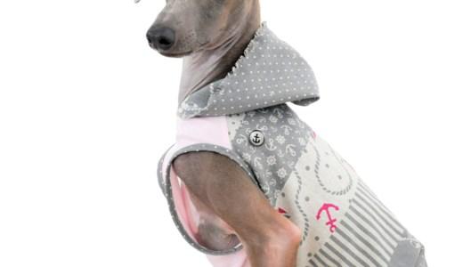 この夏。イタグレBuono!に着せて「一緒に神戸に行きたい!」と思える犬服が完成。
