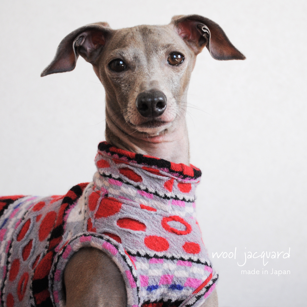 イタグレ服、ミニピン服、ウィペット服、サルーキ服、犬服・犬寝袋・雑貨の通販|犬服|日本製ウールジャガード|選べる3タイプ×3カラー(Blue/Red/Black)