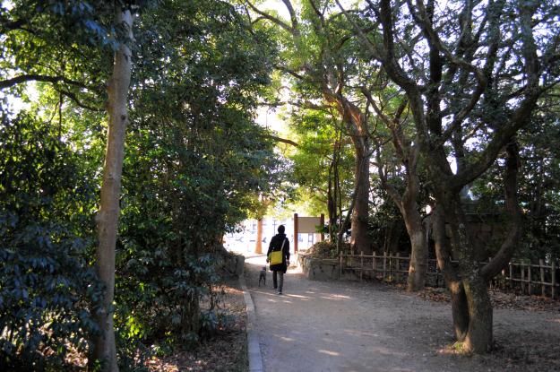 「淡路島パワースポット」国生み神話の伊弉諾神宮で感じる神聖な風01