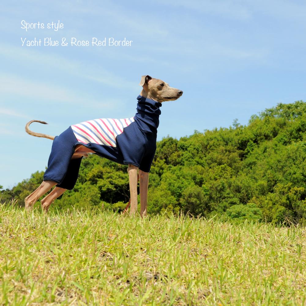 大公開!!お洒落な服を着た愛犬を「不細工に」「格好悪く」撮影する「4つのポイント」を教えます!