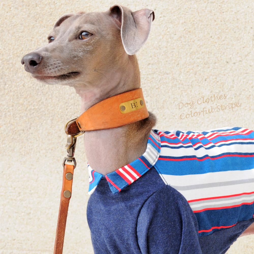 犬服 カラフルストライプ「ドレスコードカスタマイズも可能」 選べる2タイプ×3カラー(ブルー/イエロー/レッド)