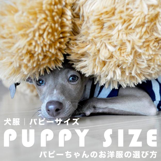 犬服|パピーサイズ「パピーちゃんのお洋服の選び方」