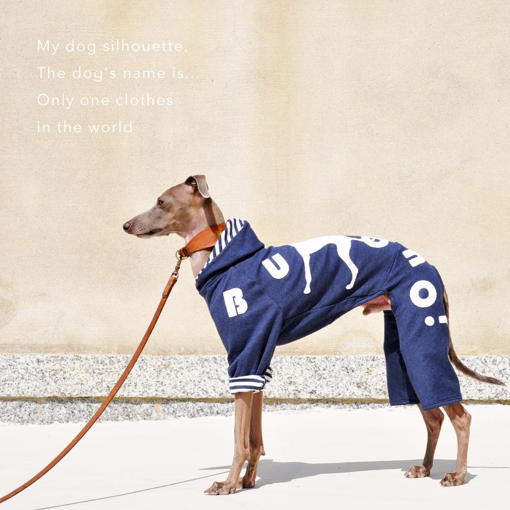 犬服のサイズ感が解りやすい「4枚の写真」と「撮影方法」を解説します