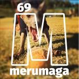 【ARATA HOUSEメルマガ Vol.69】スローモーション動画でわかるイタグレBuono!の脚の調子|2015/12/7発行