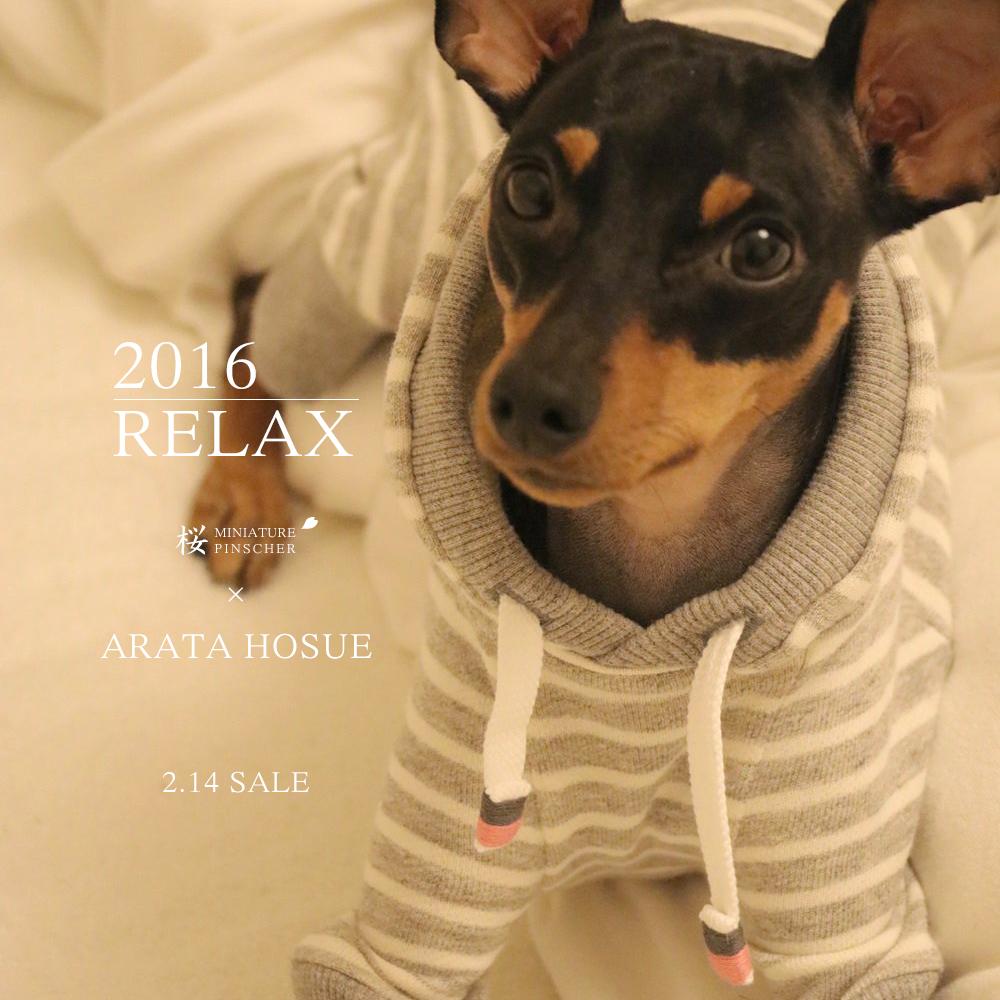 「新作犬服」2月14日発売開始|2016.RELAX|MINIATURE PINSCHER 桜 × ARATA HOSUE コラボレーション