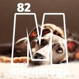 【ARATA HOUSEメルマガ Vol.82】「ドライフードのブレンド率の決め方」イタグレBuono!のごはん事情|2016/4/4発行
