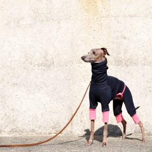 「冬の新作犬服」夏より暖かい冬 Winter Sports|裏起毛ボンバーヒートニット(保温)