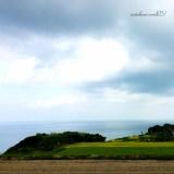 夫婦と愛犬「イタグレ」淡路島を散歩する。「そうだ!海が見える土地にプライベートランを作ろう!」