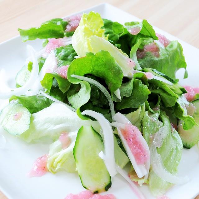 「新作犬服」春野菜が美味しい季節になりました♪移りゆく季節 -summer- パッチワークインド綿 × 接触冷感クールマーベラス