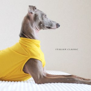 「2017.冬の新作 New color debut!」シンプルだからこそ、愛犬が輝く「犬服 Italian Classic イタリア製ストレッチ天竺ニット」