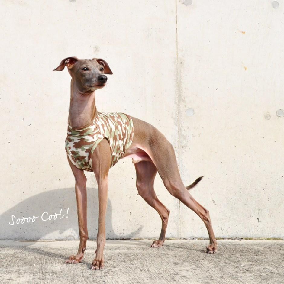 犬服 SOOOO COOL! 水に濡らしてひんやり!UVカット90% ウォータークールクロス特殊冷感ニット 選べる3タイプ×2カラー(カモフラグリーン/カモフラブルー)
